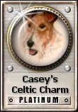 Casey's Celtic Charm Platinum Award